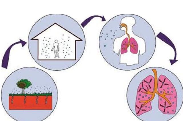 gas-radon-efectos-salud