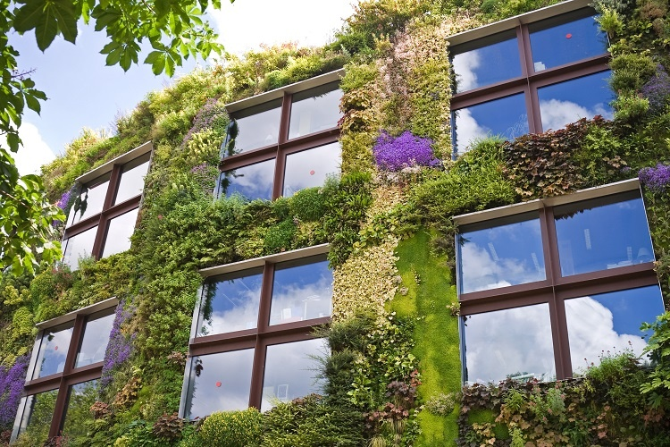 Thermal insulation turns a building into an ecological one