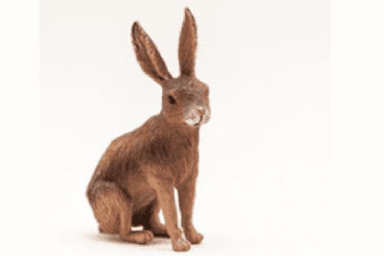 Cele do strzałów 3D: zalety poliuretanu