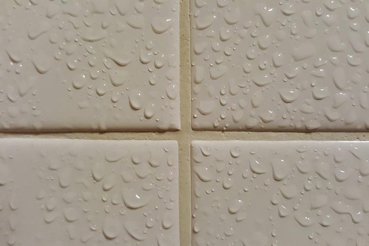 La importancia del control de humedad en los edificios